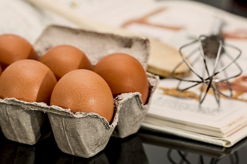ovo alimento que é rico